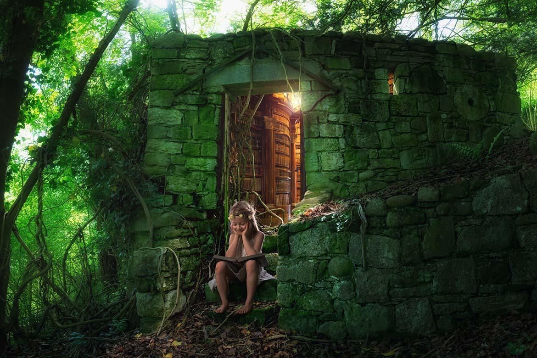 just-a-hidden-fairy-library