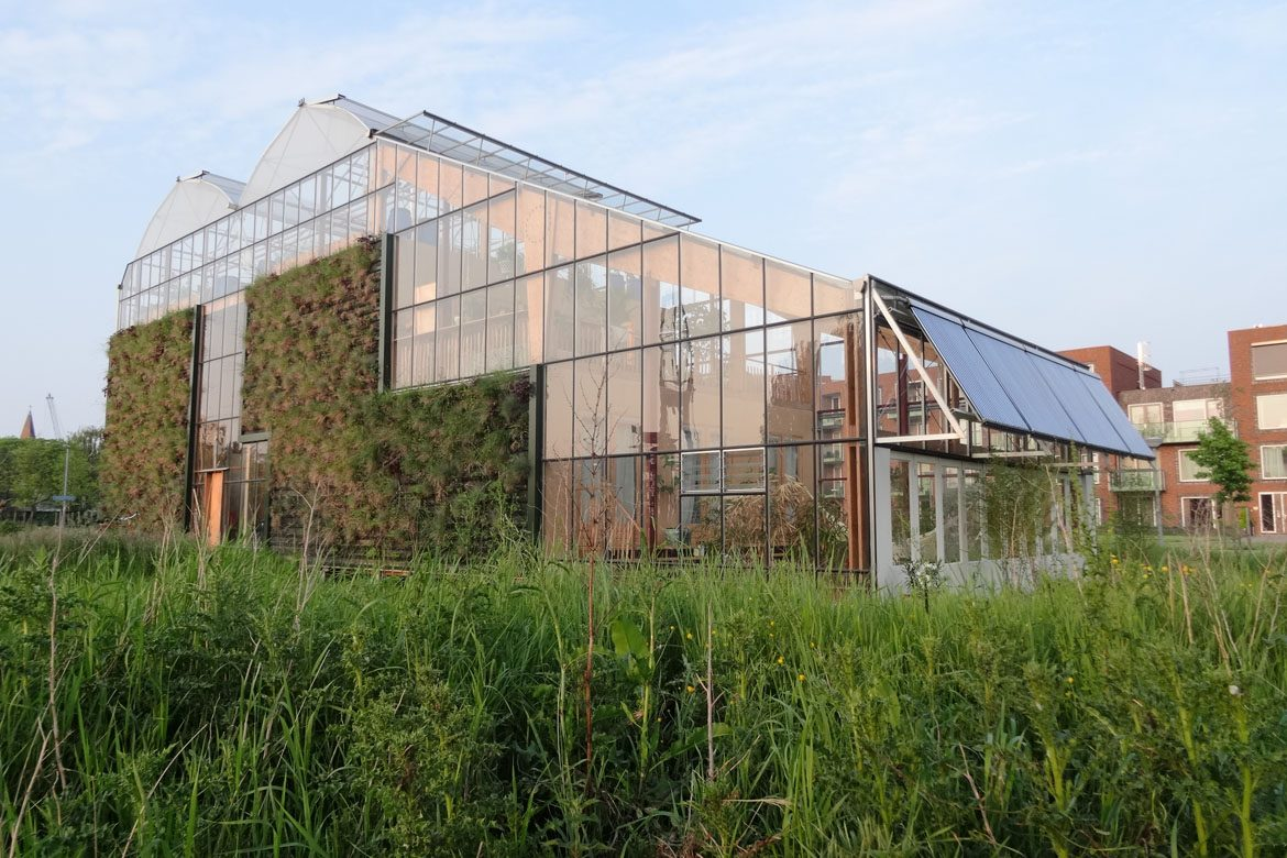 In Touch With Nature: Living In A Giant Greenhouse